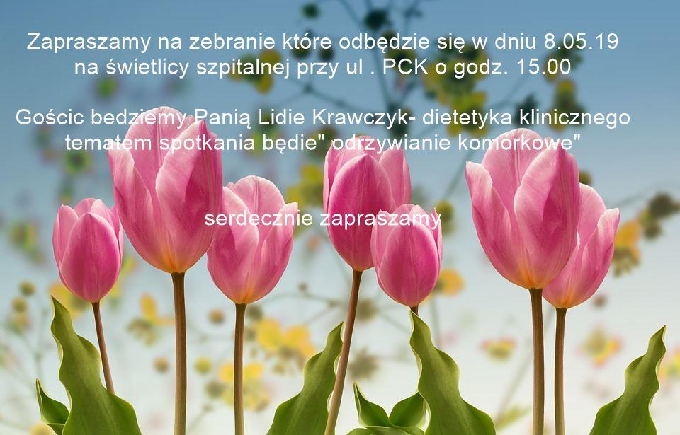 dietetyk 08.05.19